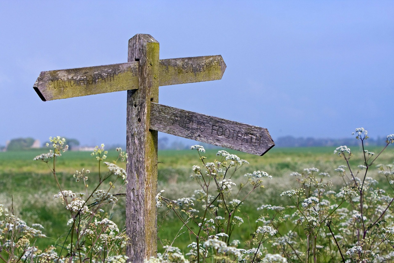 Signpost surrounded by cow parsley in full bloom. Bereavement